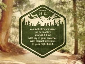4-11-13 path 1