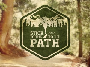 4-11-13 path 2